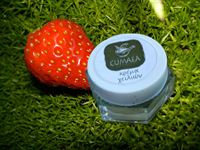 0000559_natural-lip-cream-strawberry-flavored_200