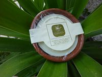 0000569_shaving-soap-with-almond-pumpkin-chamomile-and-sandalwood-essential-oil_200