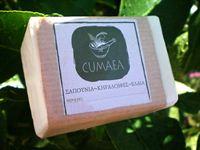0000577_soap-with-lemon-ivy-aloe-vera-and-sandalwood-essential-oil_200